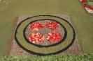 sandteppiche_la_orotava_2008_www.inselteneriffa.com-39