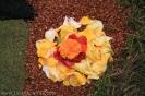 sandteppiche_la_orotava_2008_www.inselteneriffa.com-62