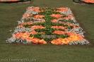 sandteppiche_la_orotava_2008_www.inselteneriffa.com-90