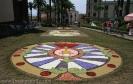 sandteppiche_la_orotava_2008_www.inselteneriffa.com-9