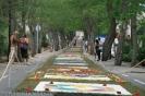 sandteppiche_tacoronte_2008_www.inselteneriffa.com-101