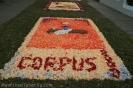 sandteppiche_tacoronte_2008_www.inselteneriffa.com-110