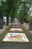 sandteppiche_tacoronte_2008_www.inselteneriffa.com-136
