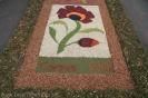 sandteppiche_tacoronte_2008_www.inselteneriffa.com-57
