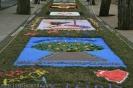 sandteppiche_tacoronte_2008_www.inselteneriffa.com-73