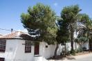 tacoronte_www.inseltenriffa.com-7