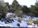 teide_nationalpark_winter_www.inselteneriffa.com-2