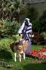 weihnachtkrippe_la_orotava_inselteneriffa.com-48